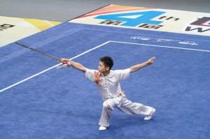 Wushu cover