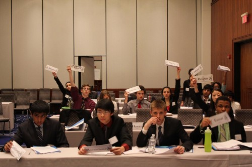 Delegates raising their placards in committee.