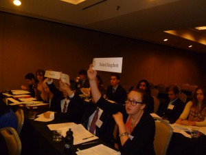 Delegates raise their placard to speak in one of SUSMUN's ten committees.