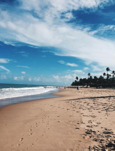 Praia do Forte, Bahia, Brazil.