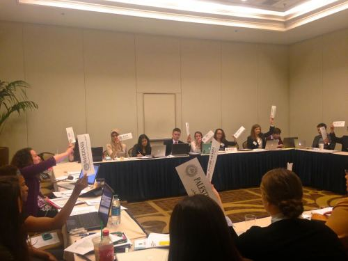 ​Delegates in the Arab Youth Committee vote on their moderated caucus